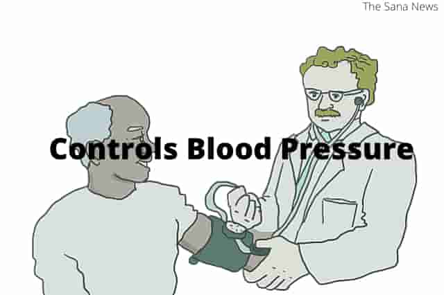 Controls Blood Pressure And Makes Blood Flow Better