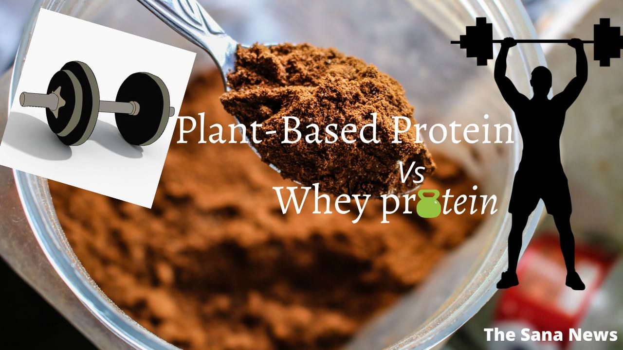Plants Based Protein Vs Whey Protein [Check Out]