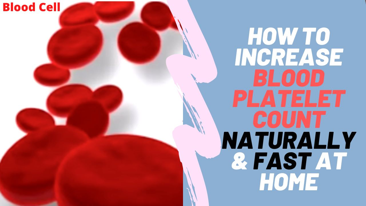 How To Increase Blood Platelet Count Naturally & Fast At Home