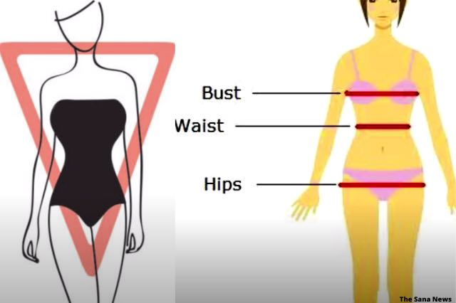 most common women inverted triangle body shape images